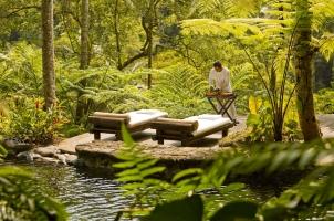 Como Shambhala Estate - Water gardens