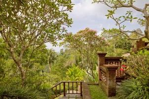 Bali COMO Uma Ubud - UMA view