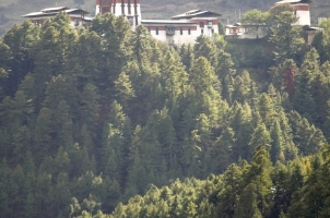Amankora Bumthang - Dzong