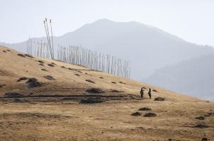 Amankora Gangtey - Valley Trek