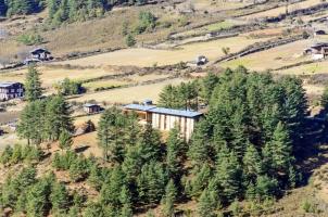 Amankora Gangtey - View