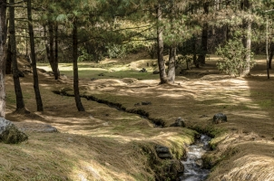 Amankora Paro - Grounds