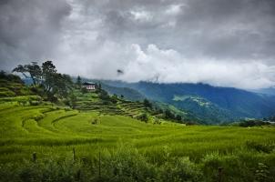 Como Punakha - View