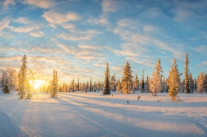 Finland - snowy landscape at sunset