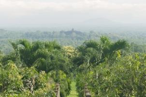 Indonesia - Nusa View of Borobudur