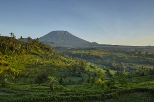 Indonesia - ricefields mount agung