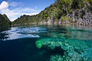Indonesia - coral reef fringes limestone islands in Raja Ampat
