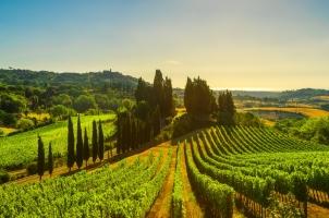 Italy - Maremma