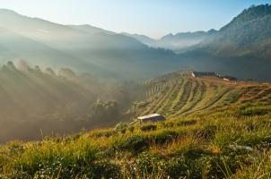 Thailand -  doi Ang khang
