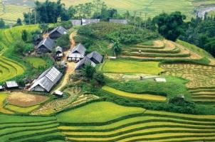 Vietnam - Sapa - Tavan hill tribe village