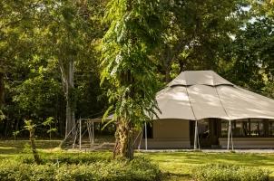 Amanwana - Jungle Tent