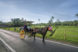 Amanjiwo - Andong Horse and Cart
