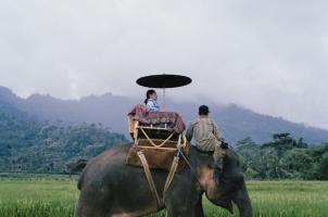 Amanjiwo - Jiwo Elephant Ride