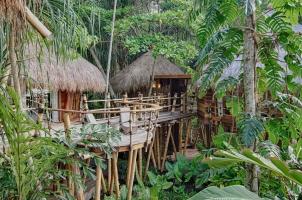 Nihi Sumba - Mamole Tree-House