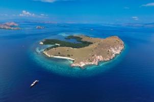 Samata Cruise - Komodo