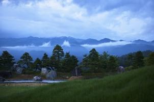 Sasayuri Ann - stone garden