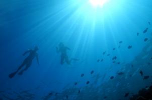 Baglioni Resort Maldives - Snorkelling