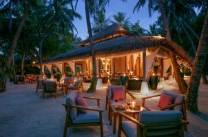 Baros - Palm Garden Twilight
