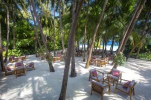 Baros - Palm Garden