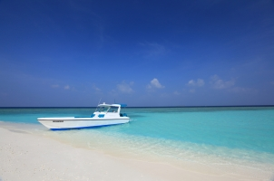 Maledives Soneva Fushi - Snorkelling