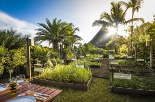 Mauritius The Oberoi Beach Resort - The Herb Trail