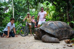 Seychelles North Islands - Interaction