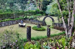 Ceylon Tea Trails - Garden