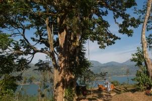 Ceylon Tea Trails - Garden and Lake
