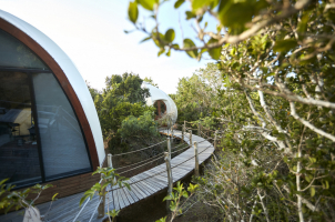 Wild Coast Tented Lodge - Cocoon