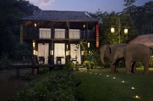 Anantara Golden Triangle - gala dinner with an elephant