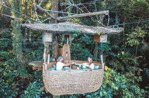 Thailand Soneva Kiri - Treepod Dining