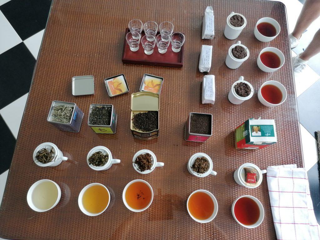 Ceylon Tea Trails - Tea Tasting
